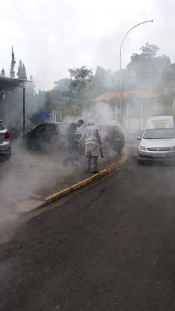 Dedetização  nas ruas e prédios públicos  vem sendo realizado