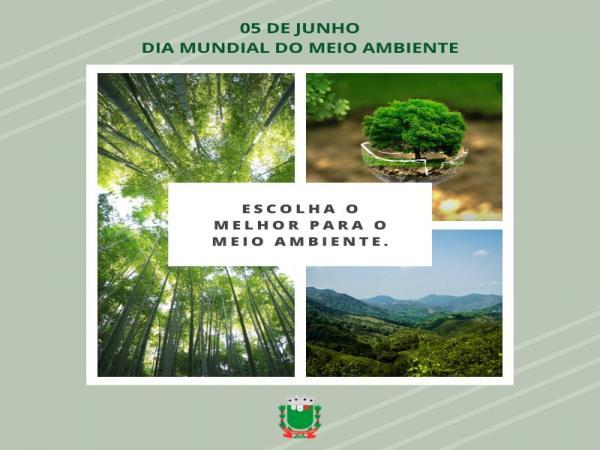 DIA 5 DE JUNHO: DIA MUNDIAL DO MEIO AMBIENTE