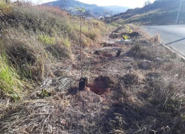 Parcerias Públicas e  Privadas contribuem com o Meio Ambiente do município
