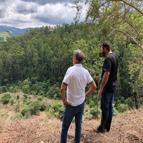 Acompanhamento do Projeto de Restauração Florestal em implantação no município de São Sebastião da Grama